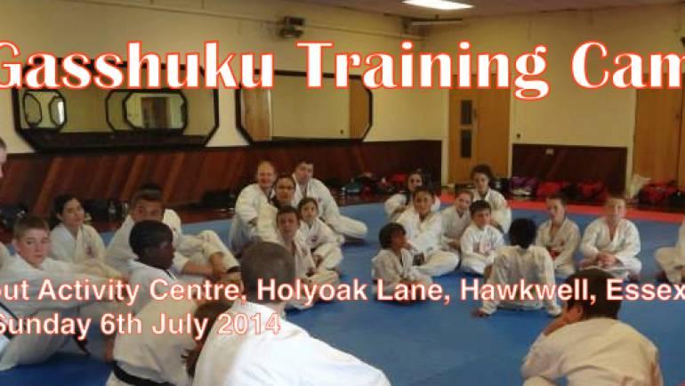 8 weeks until the Gasshuku Summer Camp!